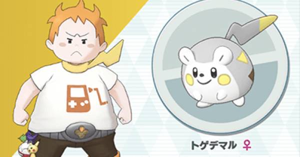 Sophocles & Togedemaru - Sync Pair Stats & Moves - Pokemon Masters