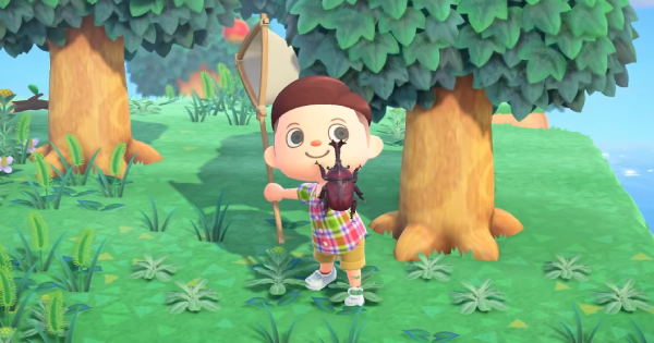 Animal Crossing Rare Fish Bugs List How To Catch Acnh