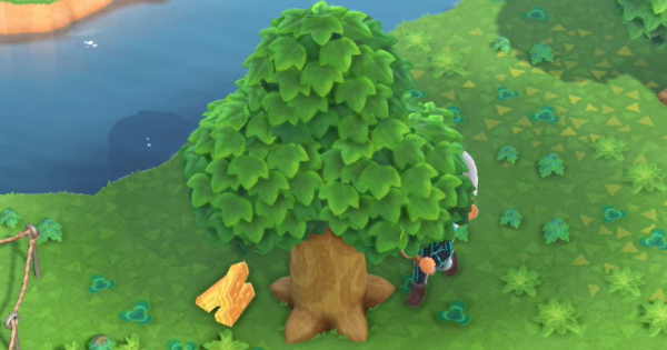 Animal Crossing New Horizons | Softwood - How To Get | ACNH