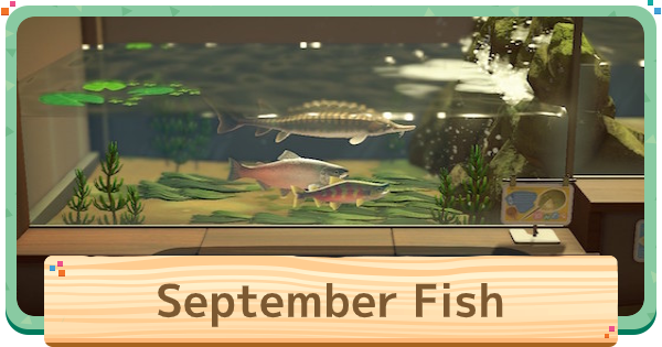 September - Fish List