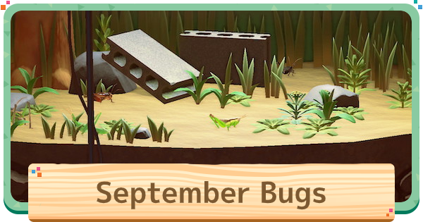 September - Bugs (Insects) List