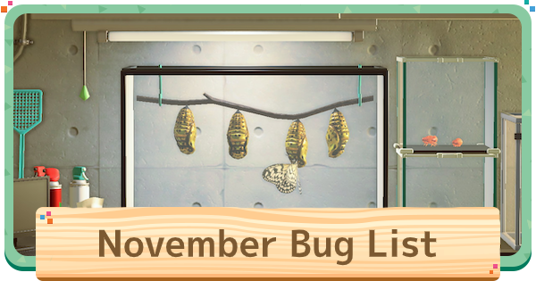 November - Bugs (Insects) List