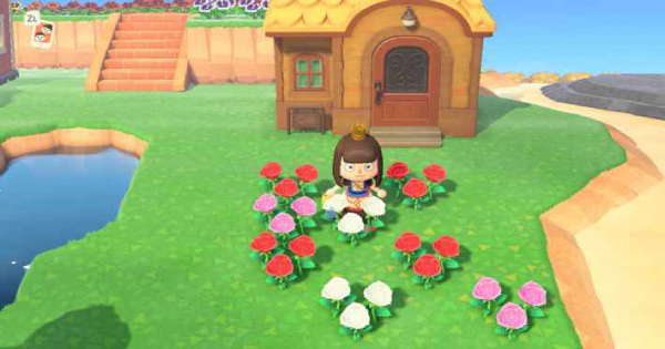 ACNH | Pink Roses - How to Get & Breed | Animal Crossing - GameWith