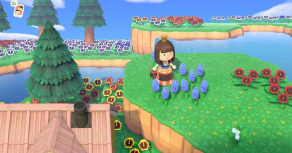 ACNH | Blue Hyacinth - How To Get & Grow | Animal Crossing - GameWith