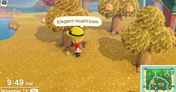 ACNH | Elegant Mushroom - How To Get & Recipes | Animal Crossing - GameWith