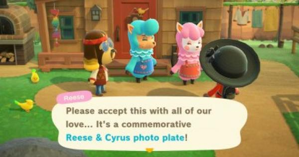ACNH | Reese & Cyrus Photo Plate - How To Get | Animal Crossing - GameWith