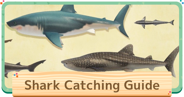 【ACNH】Shark Island Guide - How To Catch Sharks【Animal Crossing New Horizons】 - GameWith