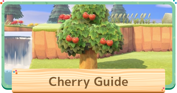 ACNH | Cherry (Fruit) - Price & Uses | Animal Crossing - GameWith