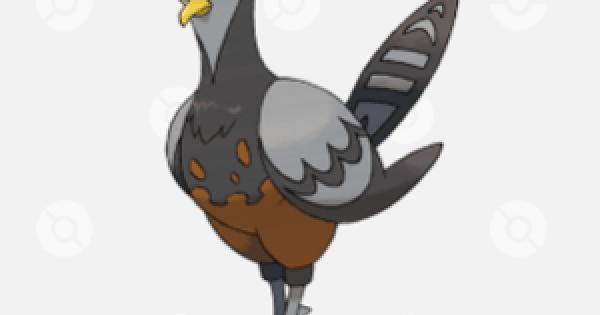 Unfezant (Female) - Stats & Weakness | Pokemon Sword Shield - GameWith