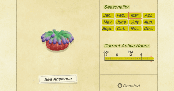 ACNH | Sea Anemone - How To Catch & Price | Animal Crossing - GameWith