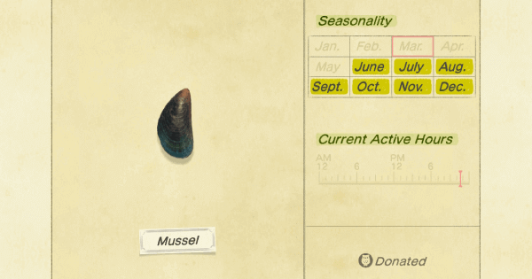 Mussel - How To Catch & Price