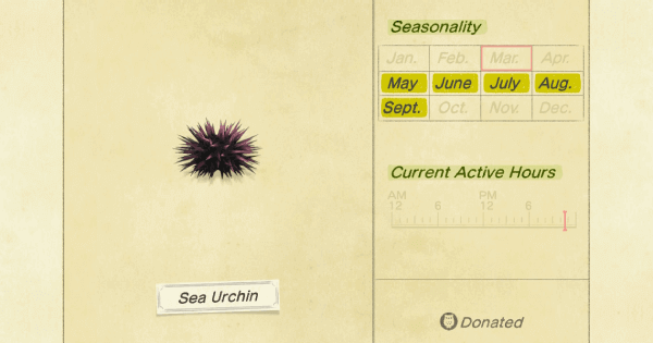 ACNH | Sea Urchin - How To Catch & Price | Animal Crossing - GameWith