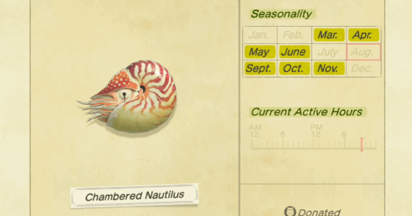 ACNH   Chambered Nautilus - How To Catch & Price   Animal Crossing - GameWith