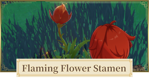 Flaming Flower Stamen Location & How To Farm   Genshin Impact - GameWith