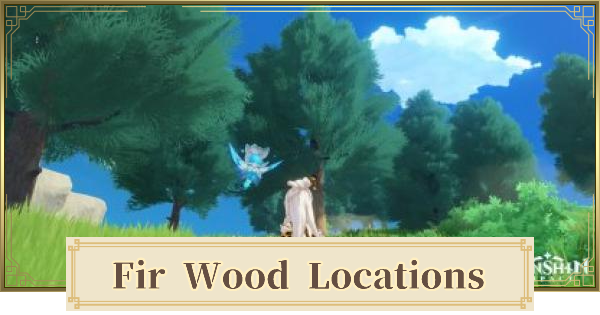 Fir Wood Location & How to Get | Genshin Impact - GameWith