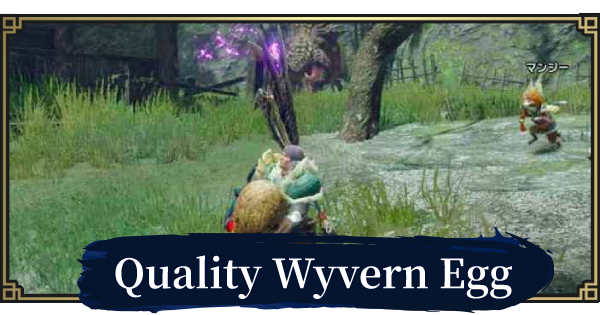 MH Rise | Quality Wyvern Egg - Locations & Delivery Route | MONSTER HUNTER RISE (MHR) - GameWith