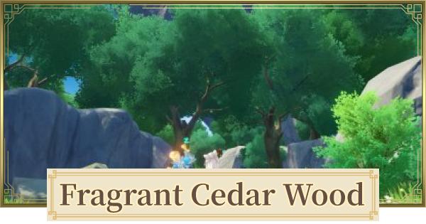 Fragrant Cedar Wood Location & How To Farm   Genshin Impact - GameWith