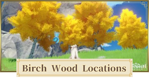 Birch Wood Location & Where to Find   Genshin Impact - GameWith