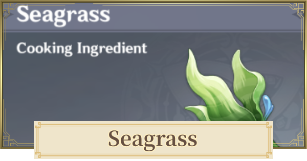 Seagrass Location & How To Farm 2.2