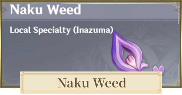 Naku Weed Location 2.1 & How To Farm   Genshin Impact - GameWith