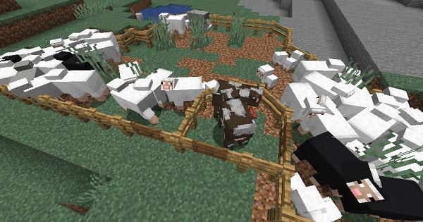 Diagonal Fences - Mod Details | Minecraft Mod Guide - GameWith