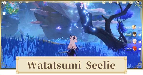 Watatsumi Seelie Puzzle - Hidden Luxurious Chest Guide | Genshin Impact - GameWith