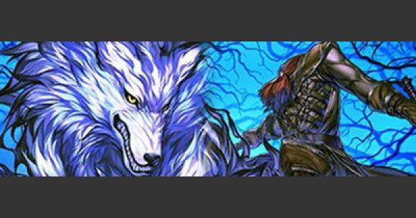 FGO | Avenger of Shinjuku(Hessian Lobo) - Stats, NP, Skill&Review | Fate/Grand Order