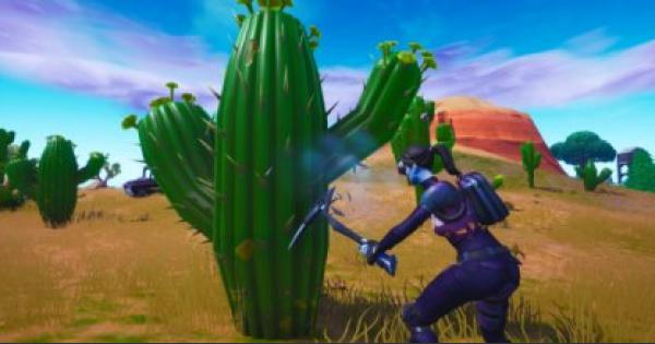 Fortnite | Destroy Cacti in the Desert Staged Challenge (Week 3) - GameWith