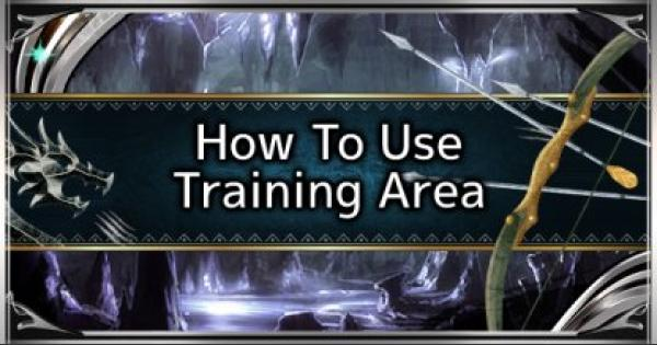 MHW: ICEBORNE   How To Use The Training Area   MONSTER  HUNTER WORLD