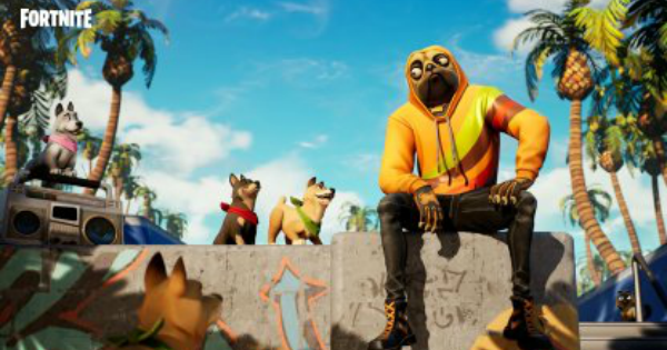 Fortnite | DOGGO Skin - Set & Styles - GameWith