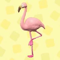 Mrs. Flamingo