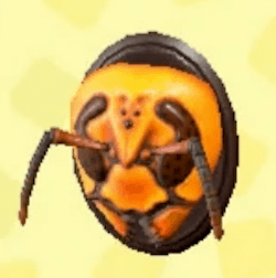 Wasp-head model