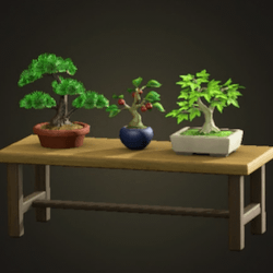 Bonsai shelf