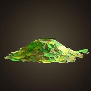Tas de feuilles vertes