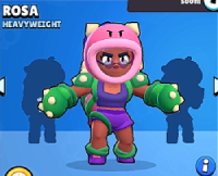 ROSA Skin1