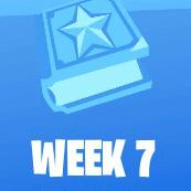 Week7 Challenge Icon