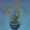 Potted Flower: Fragrant Facade