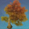 Golden Knotwood Tree