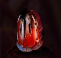 Ladybug Faceplate