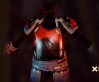 Ladybug Chestplate