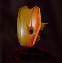 Acorn Face Mask