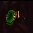 Ladybug Head Mount