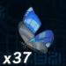 Winterwing Butterfly