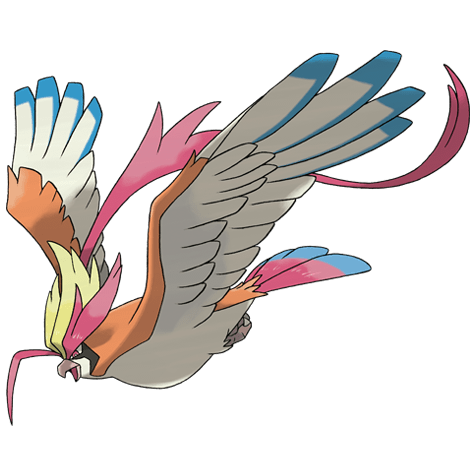 Mega Pidgeot Icon
