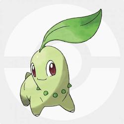 Chikorita icon