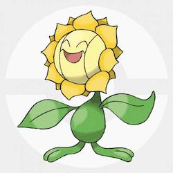 Sunflora icon