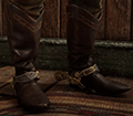 Old West Boots Image