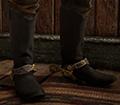 Classic Roper Boots Image