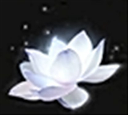 Lotus of the Palace