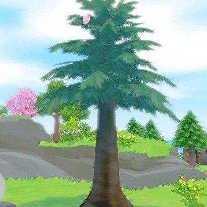 Tree type 5